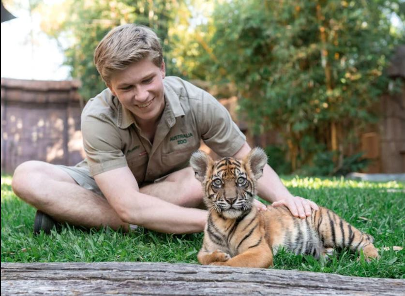 Robert Irwin Phone Number, Email, Fan Mail, Address, Biography, Agent, Manager, Mailing address, Contact Info